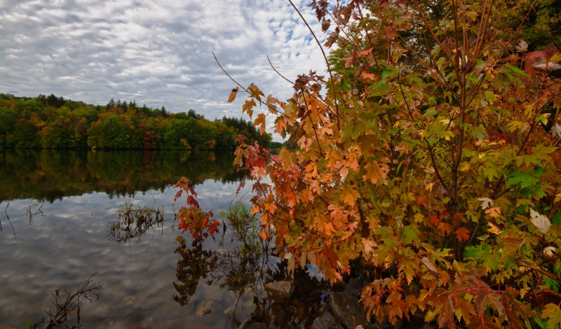 Fall, Reservoir, Trees, Water, Sky, Clouds, Hdr