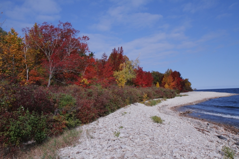 Door County Fall Foliage