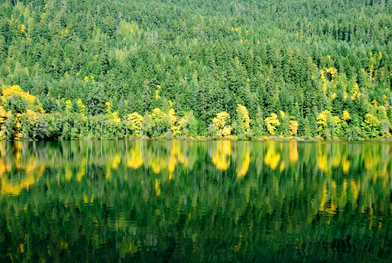Lake Crescent Greenglass