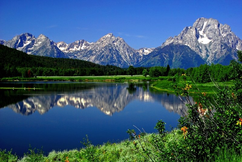 Teton Reflections