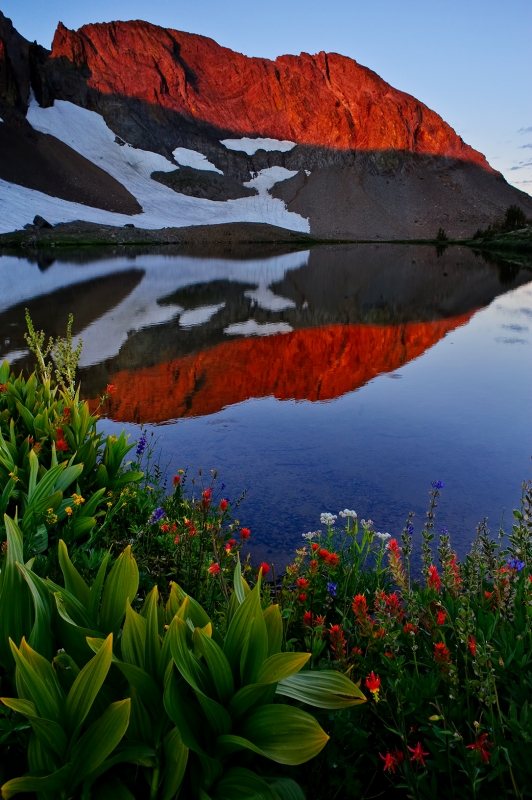 Wildflowers And Alpenglow Reflection Over Round Top Lake