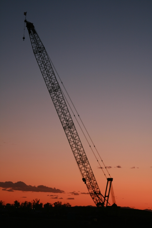 Crane In The Afterglow