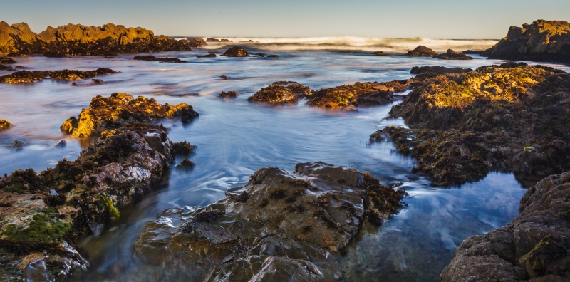 Tidal Colors-Asilomar State Beach