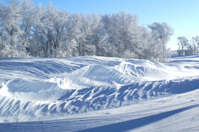 Wind Whipped Snowdrifts