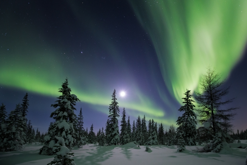 Aurora Over The Taiga