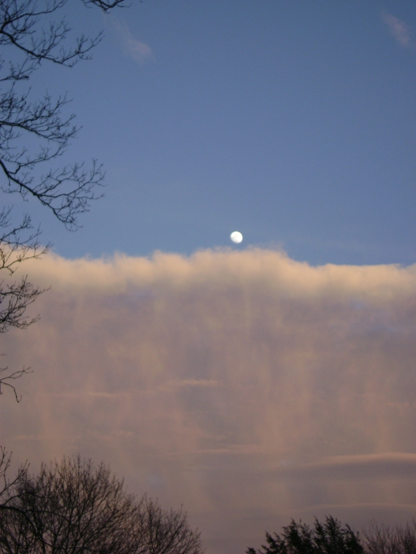 Moon Over Cloud