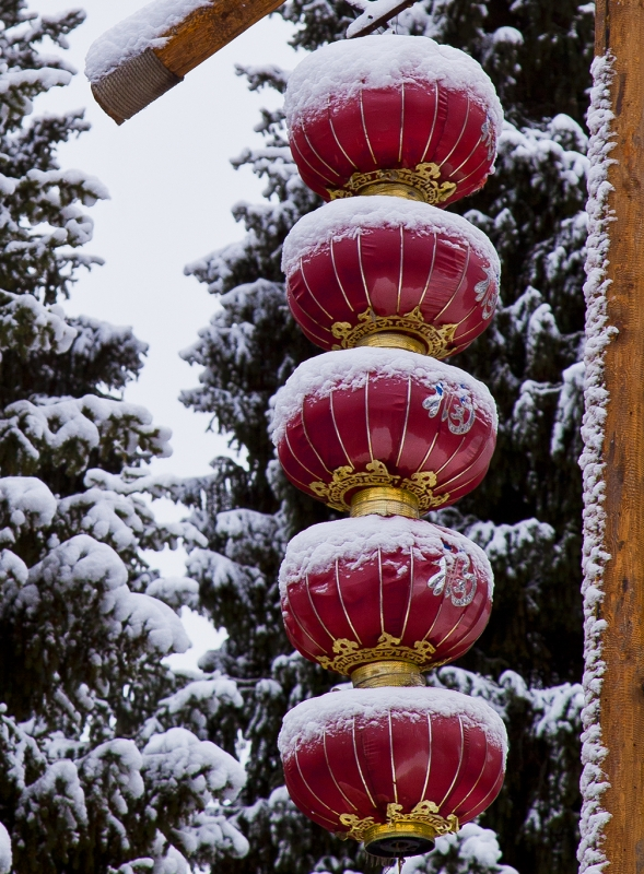Lanterns In The Snow