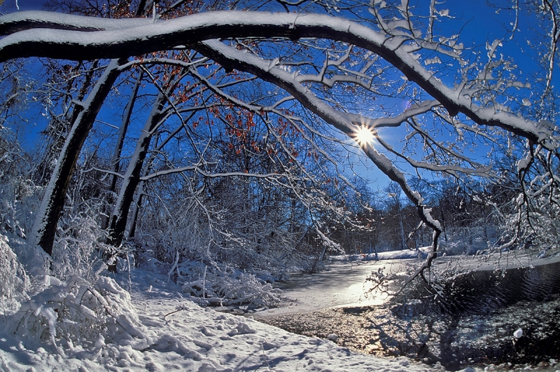 One Winter Morning