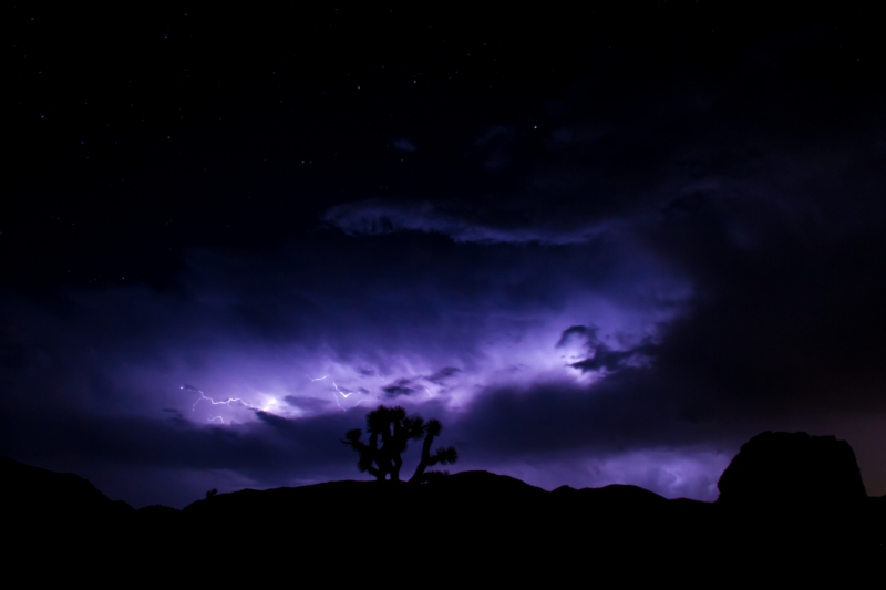 Thunderstorm Over Joshua Tree