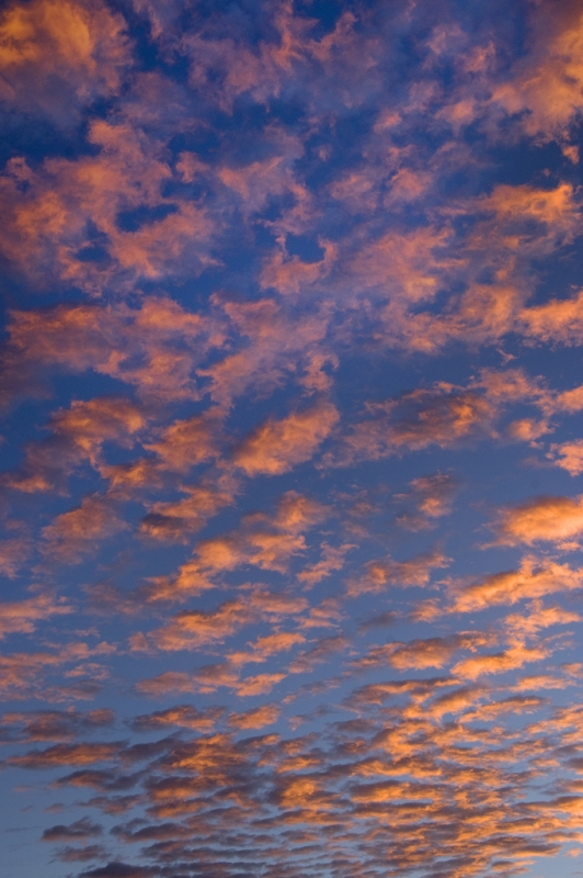 Clouds, October Morning 2012