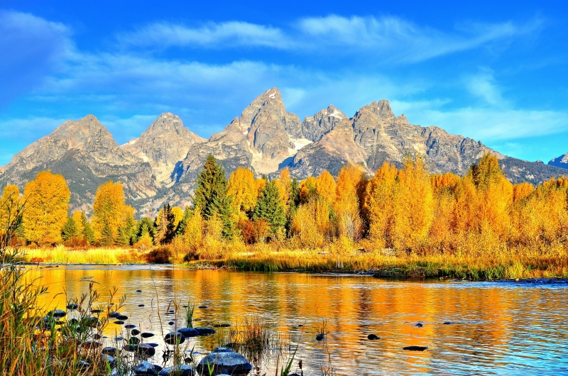 Autumn Colors Explode Below The Tetons