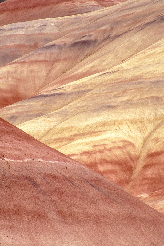 Painted Hills #14