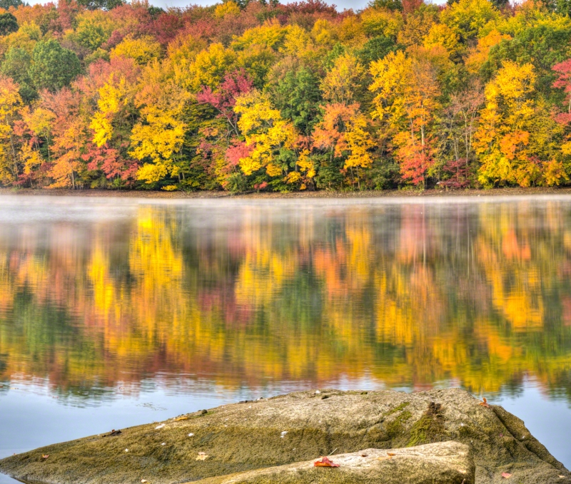 Reservoir With Fall Follage And Reflections, Rock, And Leaf