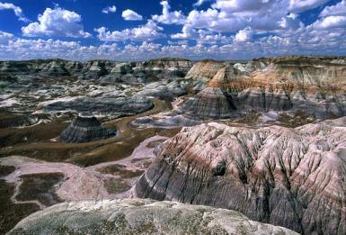 Blue Mesa Badlands / Painted Desert