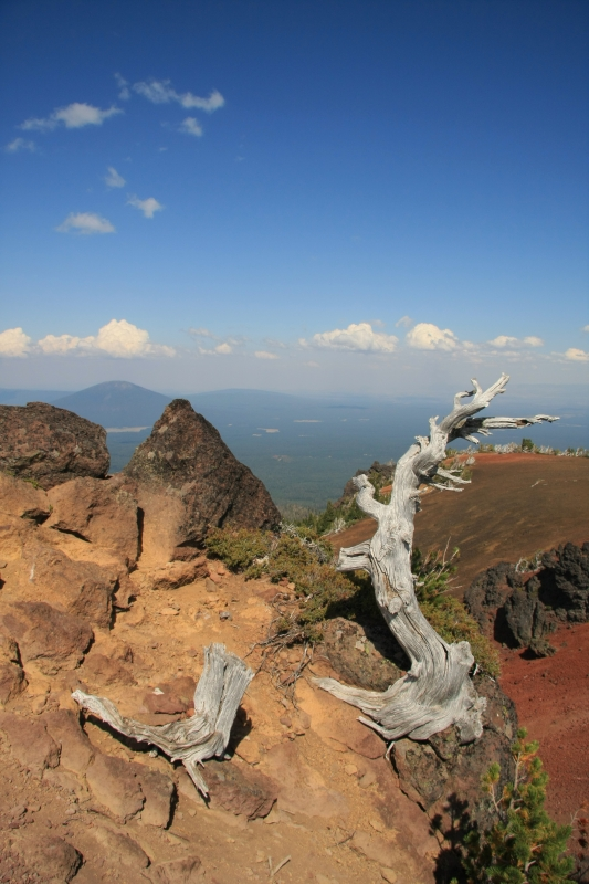 Central Oregon Summit