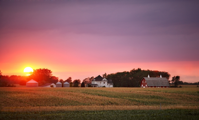 Sun Down On The Farm