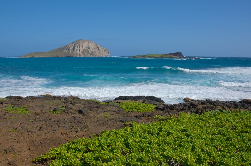 Rabbit Island – Oahu, Hawaii