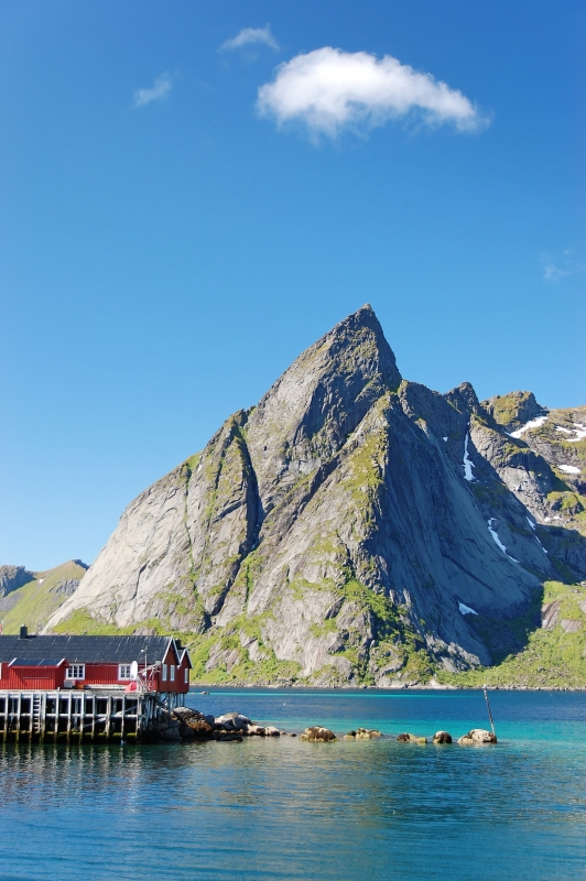 Icon Of Lofoten