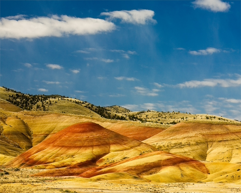 Painted Hills Showers