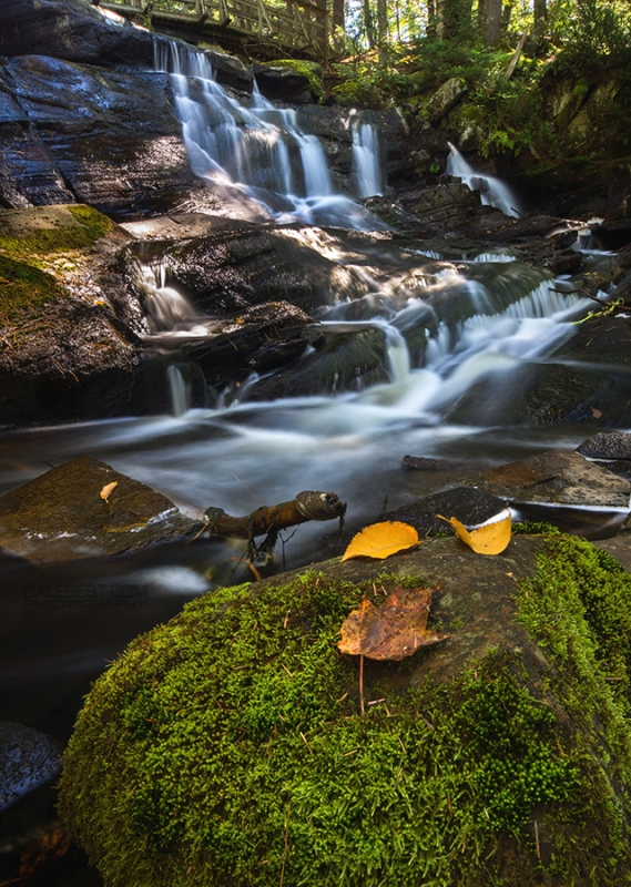 Potts Falls In Autumn
