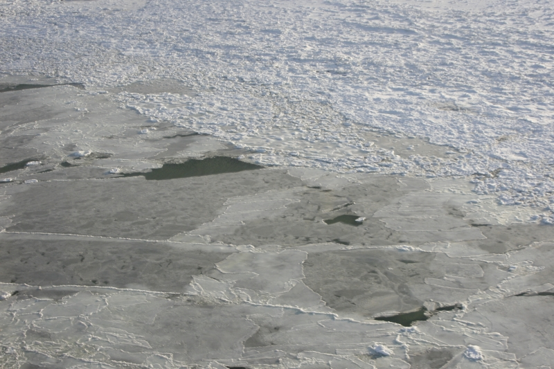 Ice Forming On Hudson Bay