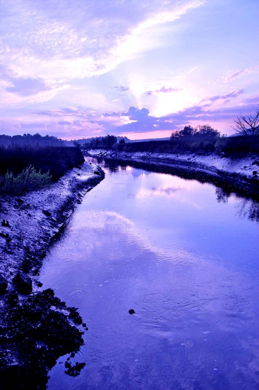 Tidal Canal At Dawn