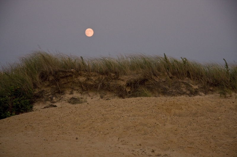 Cape Moonrise
