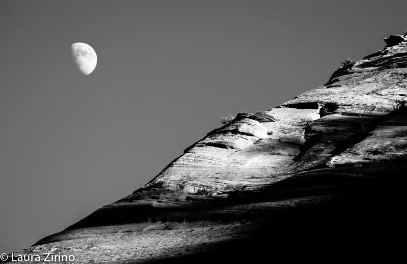 Moonrise Over Zion Cliffs In Bw