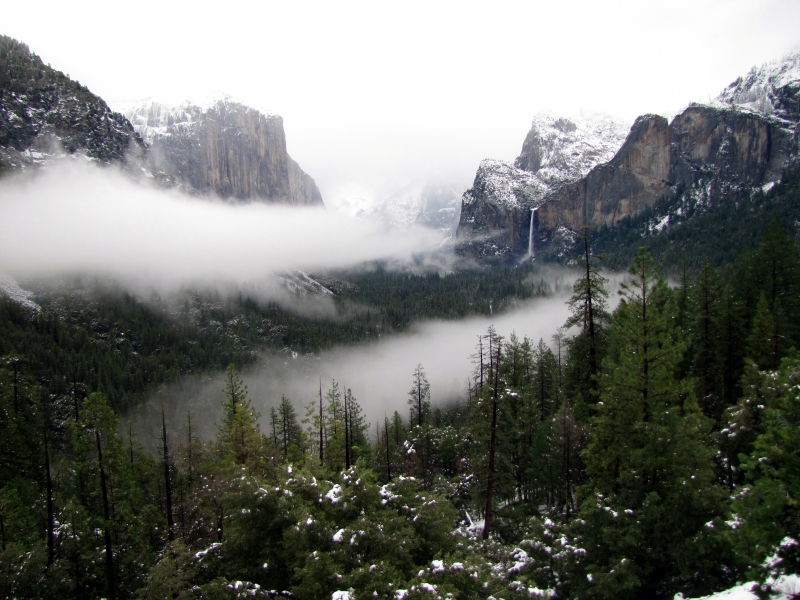 Fog Over Tunnel View