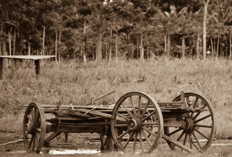 Old Wagon In Sepia