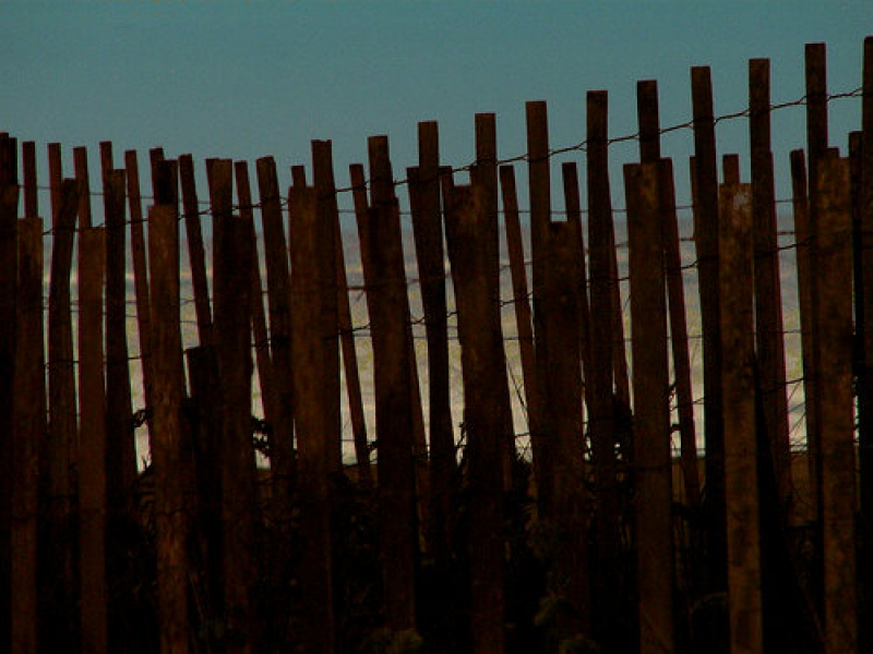 Cape May Fence