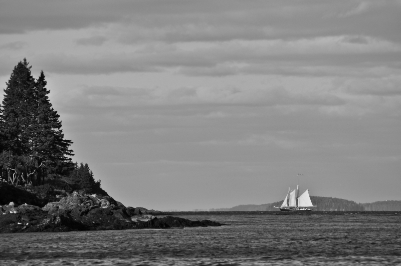 Nathaniel Bowditch Schooner Off The Coast Of Maine
