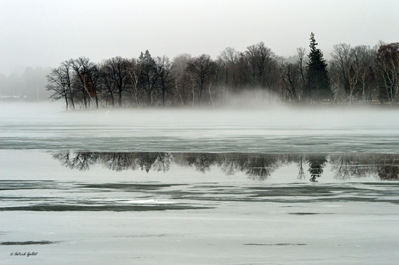 Winter's Reflection