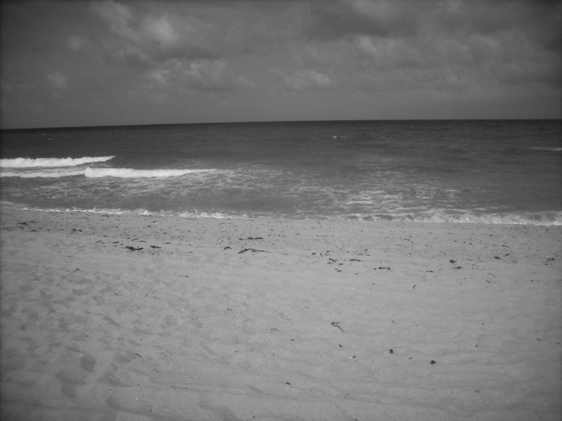 Ft. Lauderdale Beach Blk. And Wht.