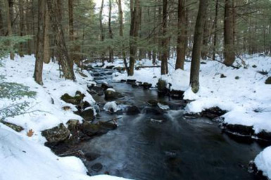 Beaver Brook, Hollis
