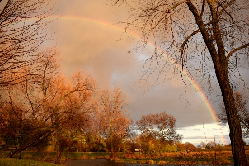 Rainbow In The Park