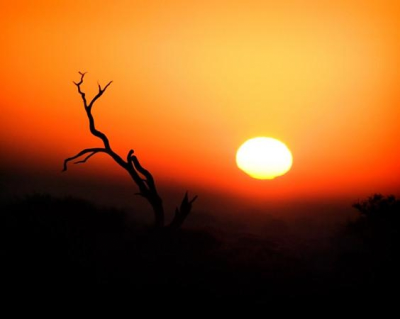 Sunrise At Kruger