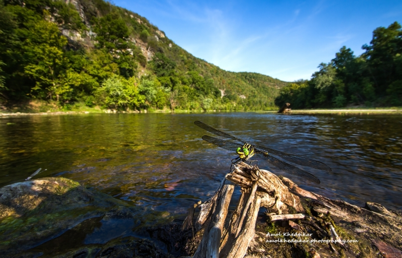 Wide Angle Macro, Buffalo National River, Ar