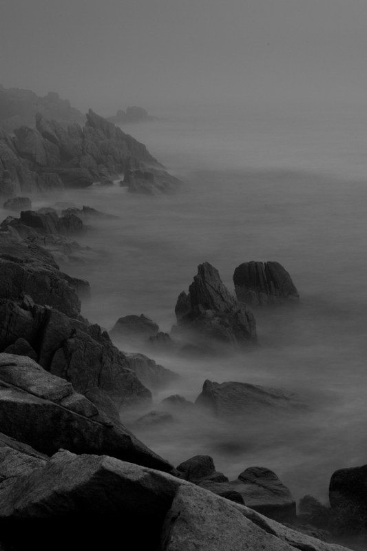 Rocky Maine Shoreline In The Fog