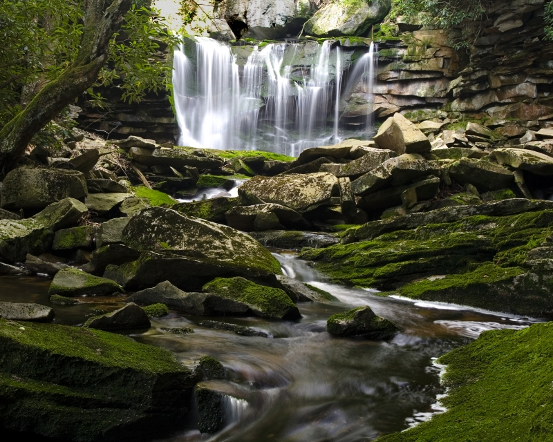 Somewhere In Black Water Falls State Park