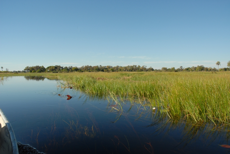 Okavango Delta Waterway