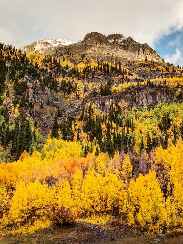 Colorado Autumn