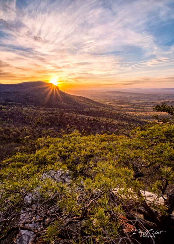 Sunstar At Hanging Rock
