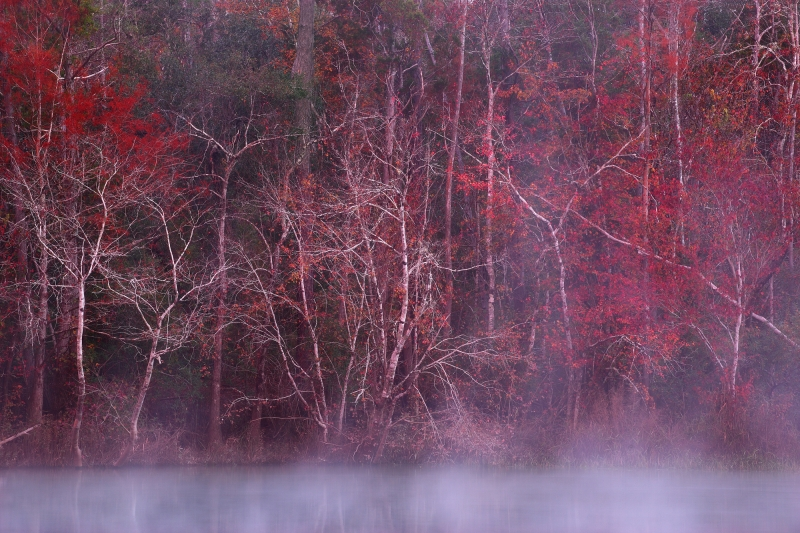 Blackwater River Mist