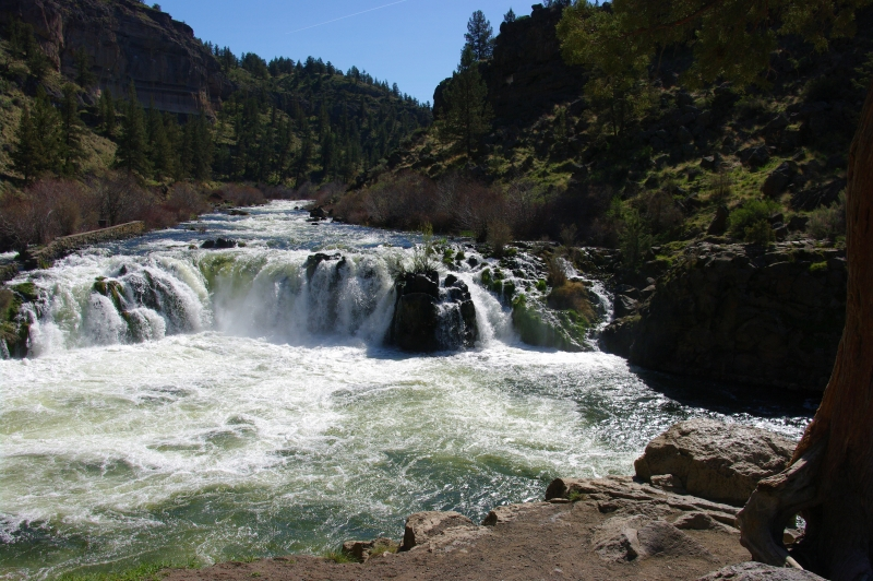 Steelhead Falls  Lower Deschutes River