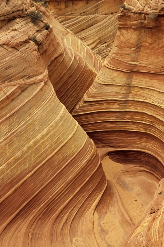 Rock Canyon, Paria Canyon-vermillion Cliffs Wildernes