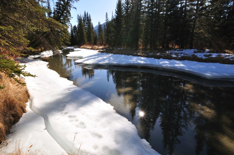 Early Ice Breakup On Forty Mile Creek