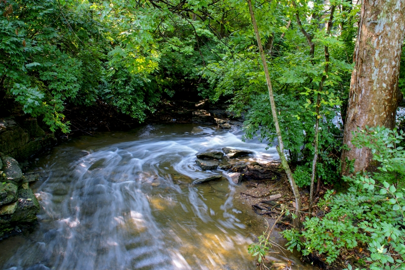 Indian Run Creek