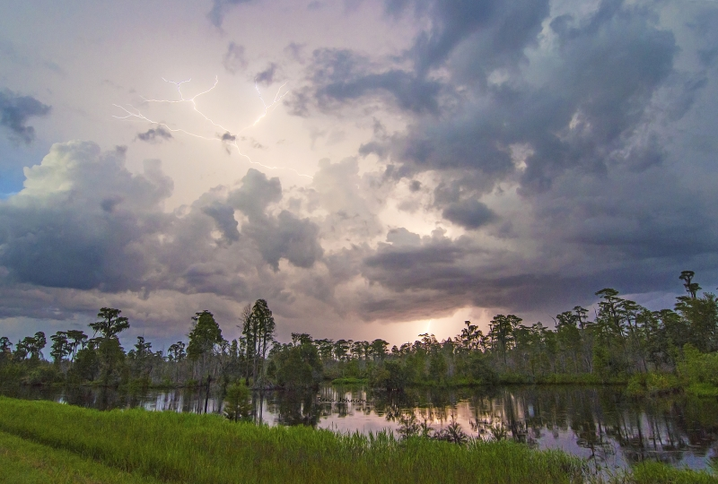 Storm In The Okefenokee