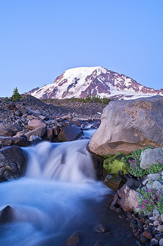 Mt. Adams At Dawn